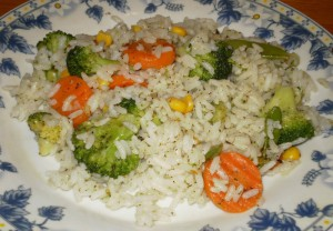 Stewed Vegitables with Rice